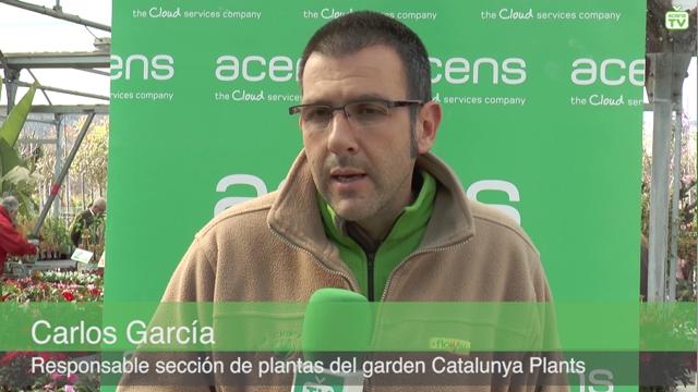 carlos-garcia-gardenencasa-caso-cliente-acens-cloud